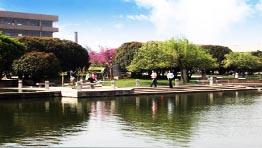 校园风景之人工湖