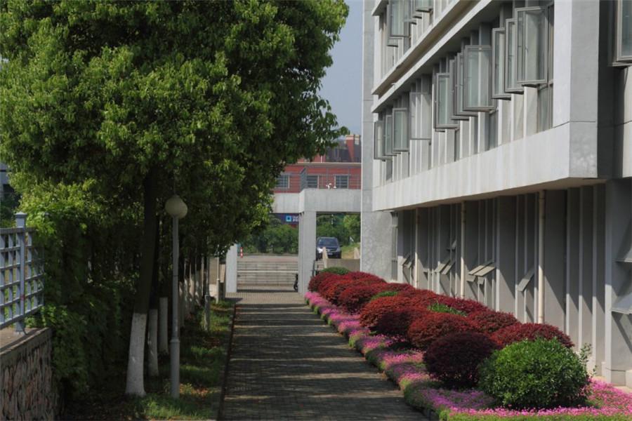 校园美景5